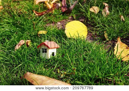 doll house on the green grass next to the autumn yellow foliage