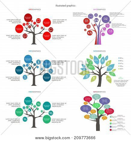 Vector diagram, trees. Can be used for workflow layout, diagram, business step options, banner, web design. Business data visualization. Process chart