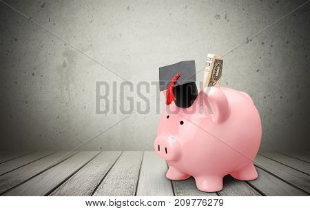 Hat bank graduation pig piggy money business