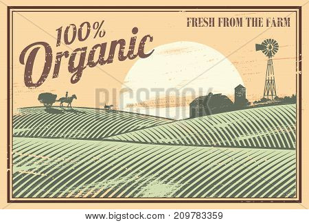 Vintage 100% organic farming banner, Vector Illustration