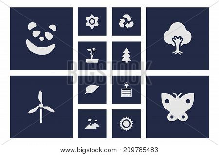 Collection Of Moth, Tree, Pinnacle And Other Elements.  Set Of 12 Natural Icons Set.