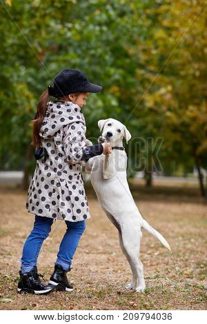 Funny doggie walking with owner in the park. Pet with girl outdoors on a natural background. Full lenght of girl. Animal concept.