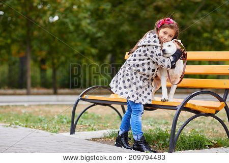 Cute girl kid with doggie hugging in the park on the street bench. Having fun together outdoors on the nature background. Animal concept.