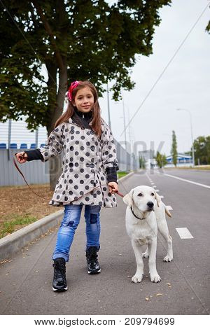 Funny doggie walking with girl on the road. Pet with girl outdoors on a natural background. Full length of girl. Animal concept.