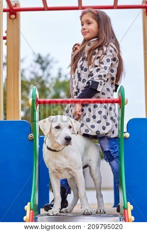 Funny doggie walking with owner on the playground. Pet with girl outdoors on a natural background. Close-up of dog. Animal concept.