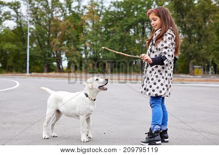 Cute girl kid with doggie playing on the street. Having fun together outdoors on the nature background. Full length of pet with owner. Animal concept.