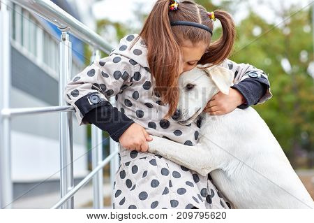 Funny doggie walking and hugging with owner in the park. Pet with girl outdoors on a natural background. Close-up of dog. Animal concept.
