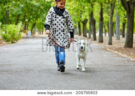 Funny doggie walking with little girl in the park. Pet with girl outdoors on a natural background. Full length of girl. Animal concept.