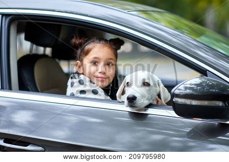 Beautiful girl sitting with cute white doggie in the black car. A little girl with puppy on the nature background. Close-up of dog. Animal concept.