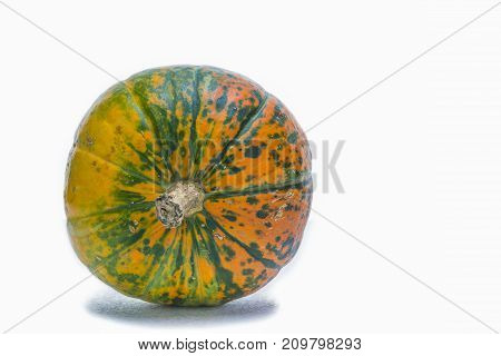 Natural Yellowish Pumpkin with Long Stem Over Pure white Background. Laid on Side. Horizontal Image Composition