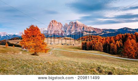 Scenic image of bright hills. Location Dolomiti alps, Compaccio, Seiser Alm or Alpe di Siusi, Bolzano province, South Tyrol, Italy, Europe, Great picture of wild area. Explore the beauty of earth.