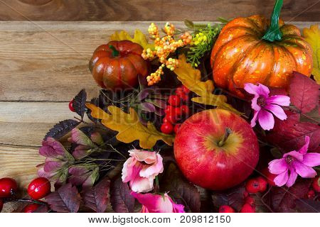 Fall Background With Rowan Leaves, Apples, Pink Flowers