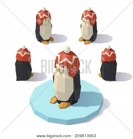 Vector isometric low poly penguin in a knitted hat with a pompon. Penguin from different angles.