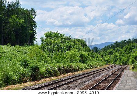 Railroad tracks through nature at Biei, Hokkaido Prefecture, Japan.