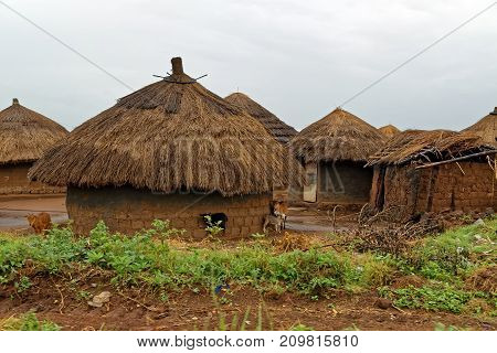 A village of traditional thatched roof african huts on a rainy day in Uganda.