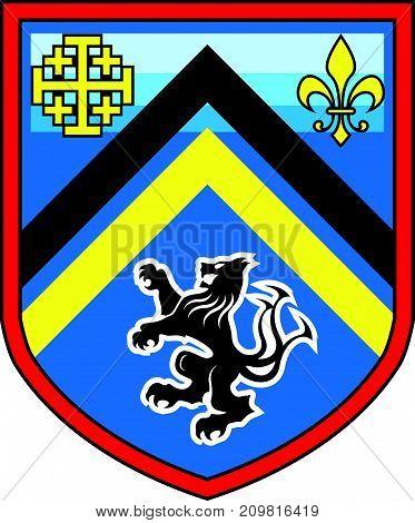 Coat of Arms dragon lion vector shield design
