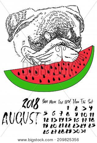 Calendar with dry brush lettering. August 2018. Dog with red watermelon. Cute pug portrait. Vector illustration