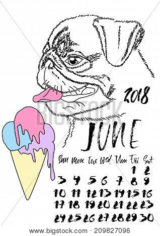 Calendar with dry brush lettering. August 2018. Dog with colorful ice cream. Cute pug portrait. Vector illustration
