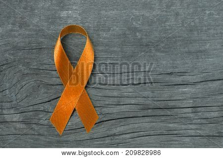 Orange ribbon for raising awareness on Leukemia Kidney cancer RDS multiple sclerosis ADHD illness