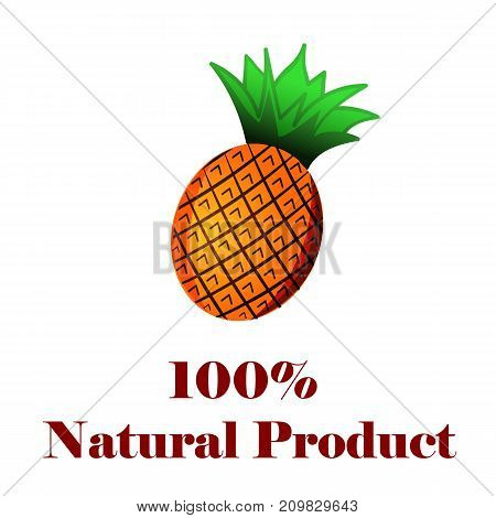 100 percent natural product a pineapple on white background