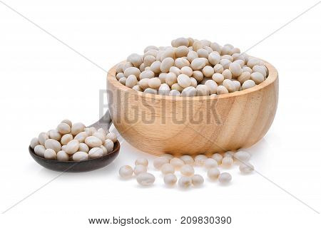 small white beans haricot white pea white kidney or cannellini purgatorio beans in spoon and wood bowl isolated on white background