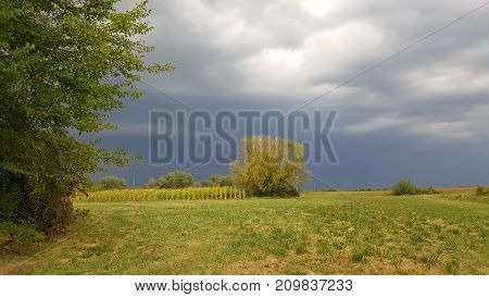 Massive storm preparing and coming closer over field and trees