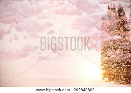 Scenic view of cloudscape  against pine trees on snow covered field
