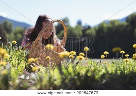 Cute girl collecting flowers from field on a sunny day