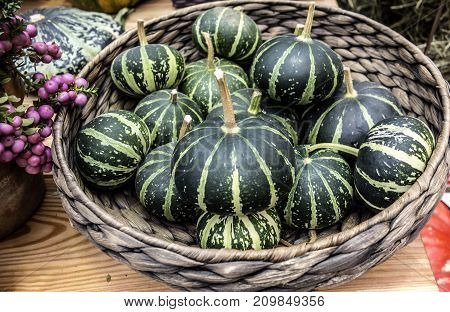 Rural natural background made from decorative striped pumpkins lying in a wicker basket.
