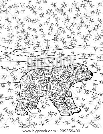 Hand drawn isolated illustration of a baby polar bear in the zentangle style. Adult coloring page with cute arctic bear cub. Vector illustration.