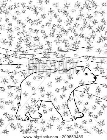 Hand drawn isolated illustration of a baby polar bear for children coloring book. Coloring page with cute arctic bear cub. Vector illustration.