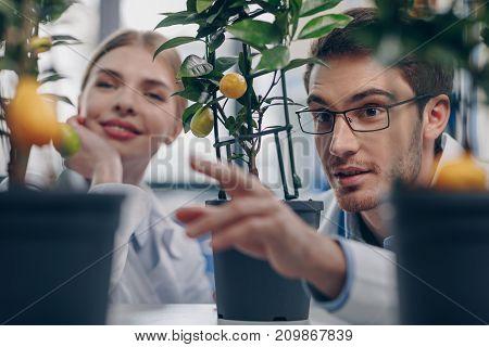 Biologists With Lemon Plants