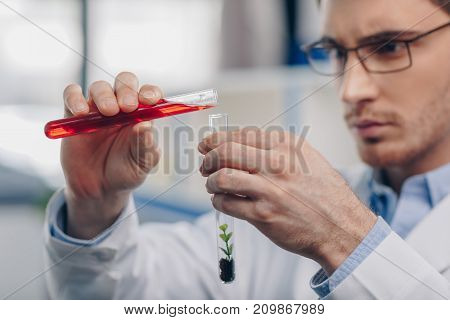 Pouring Reagent Into Flask With Plant