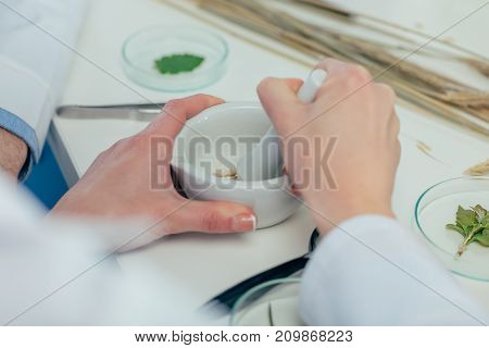 Biologist Working With Petri Dishes