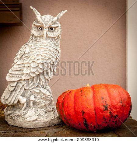 Closeup of a pumpkin and a figurine of an owl