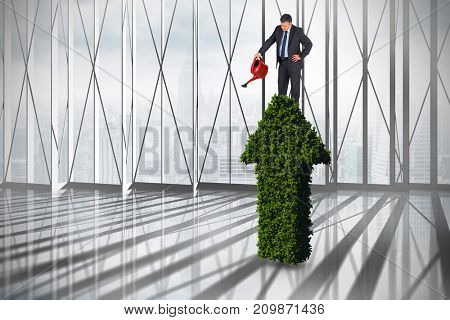 Mature businessman using watering can against white room with large window overlooking city