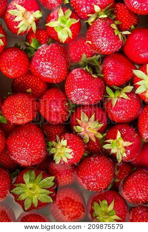 Closeup of fresh ripe perfect strawberries in waterbath directly from above background
