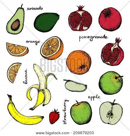 Vegan Menu - set of 16 color hand-drawn objects - apple, strawberry, banana, pomegranate, orange and avocado