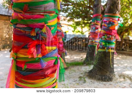 Colors Cloth Wrap Around The Tree Or Fabric Seven Colors Towel Wrapped Plam Tree Multicolored Cloth
