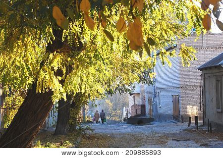 Quiet autumn street in a small south town. A pair of elderly people goes into the distance. Concept of autumn in a small town.
