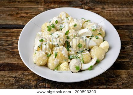 Potato salad with eggs and green onion on white plate close up view