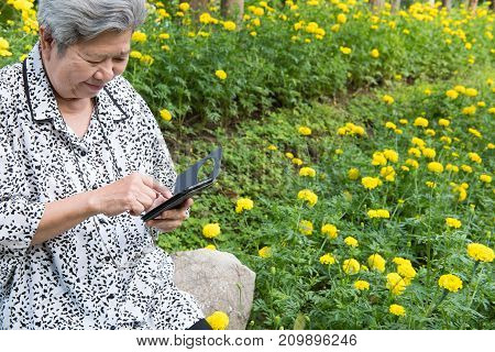 Elder Woman Holding Mobile Phone While Sitting On Bench In Garden. Elderly Female Smiling While Text