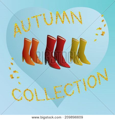 Women boots autumn collection vector concept illustration