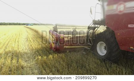 Wheat harvesting shearers. Wheat harvesting agriculture. Harvesting steadicam shot motion video