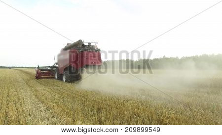 Combine harvester. Wheat harvesting shearers. Wheat is harvesting. Harvesting wheat bread agriculture steadicam shot slow motion video