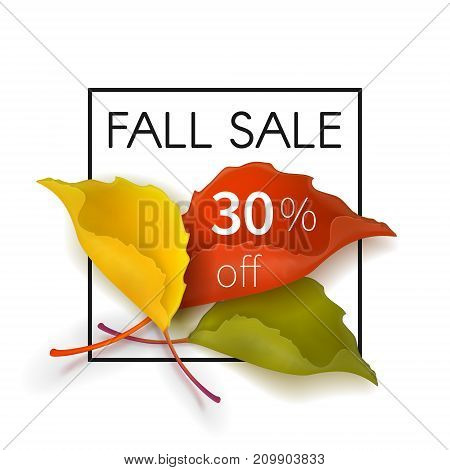 Fall sale poster with a bouquet of yellow, red, green leaves indicating the percentage discount. Vector design for leaflets store or autumn sale  web banner background