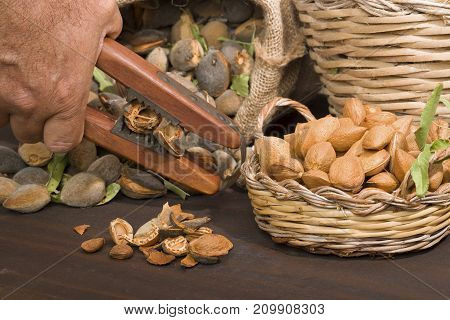 Almonds over a rustic wooden board. Rustic sack and basket. Nutcracker and almond oil. Almond flour.