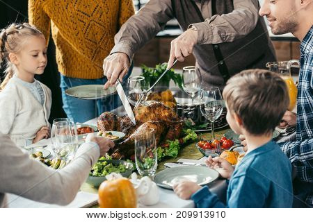 cropped shot of family cutting thanksgiving turkey while celebrating