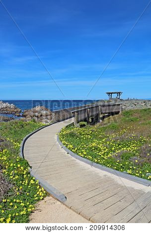 Walkway to a gazebo overloooking the rocky coast at Asilomar State Beach on the Monterey Peninsula in Pacific Grove California vertical