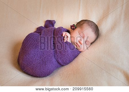 Sleeping newborn baby girl in a violet knit baby blanket. Isolated on background.